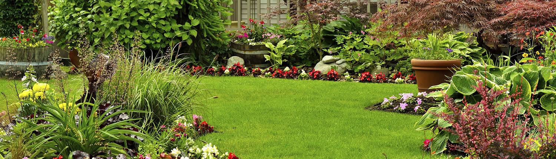 Harrogate Garden Maintenance