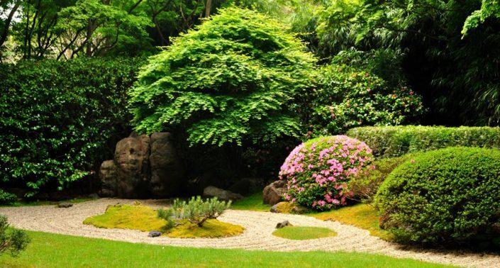 Harrogate Gardening Services